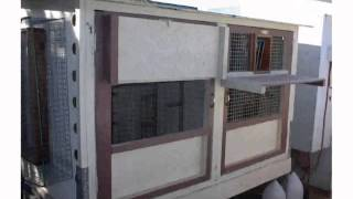 Small Pigeon Loft Design