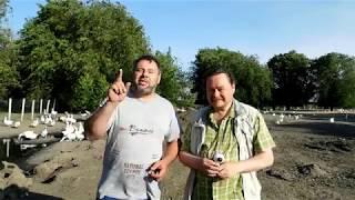ФЕРМЕР RU у меня в гостях(, 2017-06-02T18:19:44.000Z)