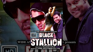 Black Stallion ll HD Full Movie ll - Watch Free