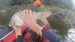 Супер Рыбалка на Нижней Волге и Ахтубе 2021 Сом Сазан Судак Лещ