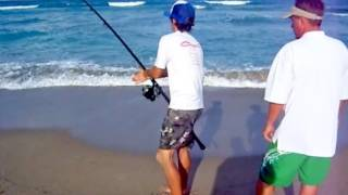 Sport Fishing for Sharks