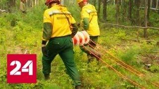 В Забайкалье потушен крупный лесной пожар - Россия 24