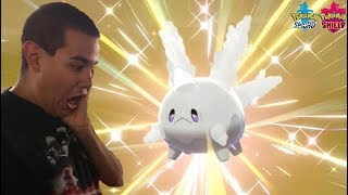 WE HATCHED SHINY GALARIAN CORSOLA IN POKEMON SWORD AND SHIELD