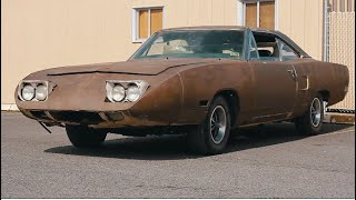 SUPERBIRD LEFT FOR DEAD HAS NEW LIFE