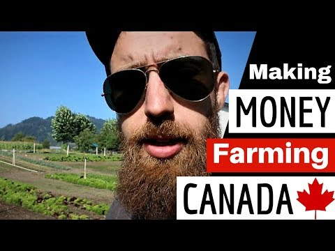 Making MONEY FARMING in CANADA with Scott Hebert from Flavourful Farms