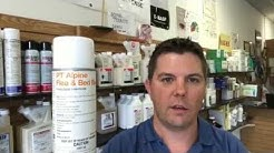 Best Flea Control For Inside The Home-Pest Control Spring Hill FL