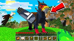TAMING a FLYING Minecraft HIPPOGRYPH Pet!