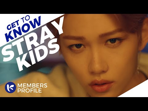 Stray Kids (스트레이 키즈) Members Profile (Birth Names, Positions etc..) [Get To Know K-Pop] (2019 ERA)