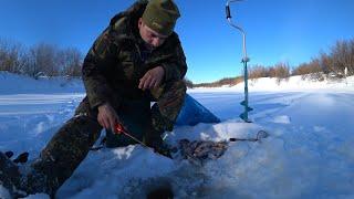 Рыбалка в лютый мороз Надергал кучу окуней Часть 2