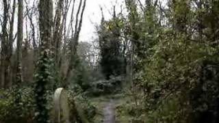 A Walk In Highgate Cemetery, London.wmv