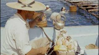 "Pearl Divers of Japan, from ""Women of the World"""