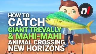 How to Catch the Mahi-Mahi &amp Giant Trevally in Animal Crossing: New Horizons
