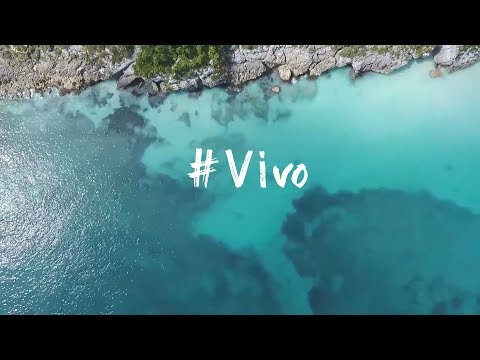 #VIVO (Official Lyric