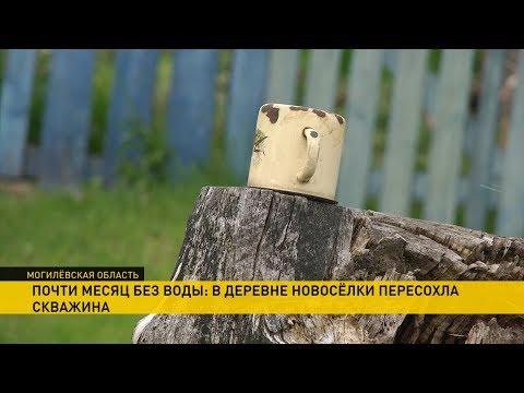 Жители деревни Новосёлки
