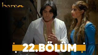 Harem - 22. Bölüm