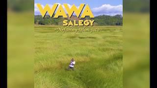 Wawa Salegy - Nefan'ny telon-jato - audio