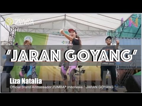 Jaran Goyang Indonesia Dangdut Music Choreography By Liza Natalia & Team