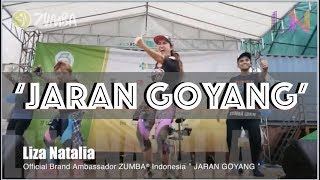 Jaran Goyang | Indonesian Dangdut Music | Choreography By Liza Natalia & Team