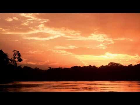 Sapiens - Clove's Story (Inkfish Remix)