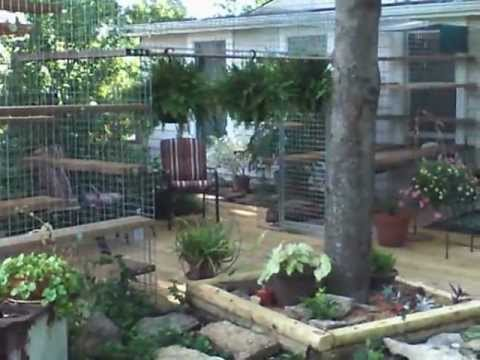Cat Habitat For The Backyard Youtube