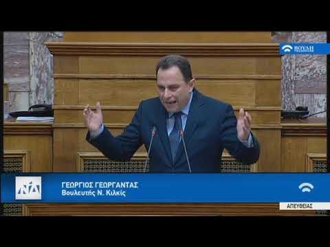 Αποτέλεσμα εικόνας για 22.1.2019 Ομιλία Γ. Γεωργαντά για το Σκοπιανό στην Επ. Εθνικής Άμυνας και Εξωτερικών Υποθέσεων