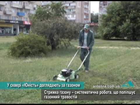 Телеканал АНТЕНА: У сквері «Юність» доглядають за газоном