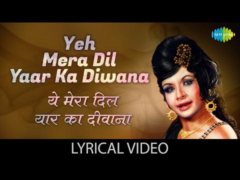 Hindi pic picture video geet junagan