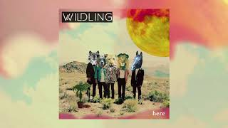 Wildling - Hummingbird [Official Audio]