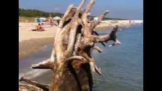 La spiaggia della Bassona Lido di Classe