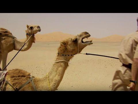 Deserted By Desert Camels - Ben & James Versus The Arabian Desert - BBC