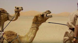 Deserted By Desert Camels - Ben &amp James Versus The Arabian Desert - BBC