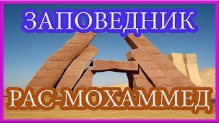 видео Рас-Мохаммед