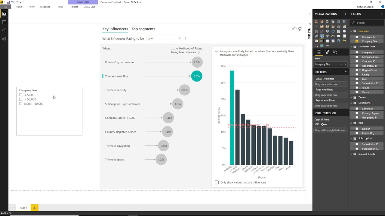 Preview on the new Power BI AI Features and Key Influencers