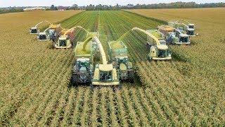 Maishäckseln EXTREM | John Deere | Fendt | Case IH | Traktoren im Einsatz | AgrartechnikHD