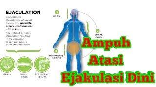 Gambar cover CARA AMPUH MENGATASI EJAKULASI DINI SECARA ALAMI (Terapi Refleksi)