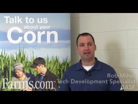 BASF Canada's Armezon PRO Corn Herbicide Technology Overview