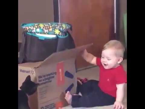 Cute Funny Cats And Babies Compilation | The Cutest Cat Baby Video