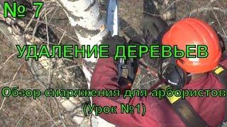 Удаление деревьев. Снаряжение для арбористов обучение (урок №1)