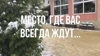 Шереметьевский приют для собак! БФ