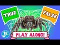 PLAY GAME - SPIDERS - TRUE or FALSE (INTERACTIVE GAME!)