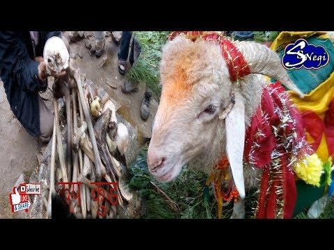 विश्व की सबसे बड़ी  धार्मिक यात्रा (  Nanda Devi Raj Jat yatra )