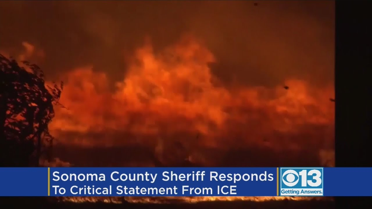 Sonoma sheriff rips immigration officials statement on arson sonoma sheriff rips immigration officials statement on arson arrest aiddatafo Image collections