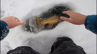 Incredible Ice Fishing Battle With MEGA BROOK TROUT! (Trout Personal Best)