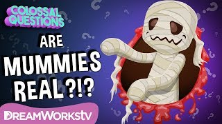 How Were Mummies Made? | COLOSSAL QUESTIONS