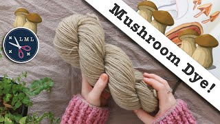 Natural Dye Experiment: Soft Brown wool dye with Foraged and Gathered Mushrooms | Last Minute Laura