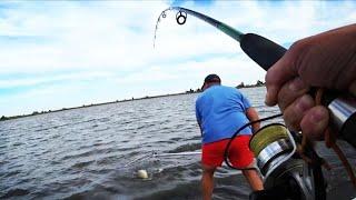ПОСПАЛ И НАЧАЛОСЬ! ЛЕТАЮЩИЕ СПИННИНГИ ЧАСТЬ 1. Рыбалка 2020. Дикий сазан на жмых. Дон.