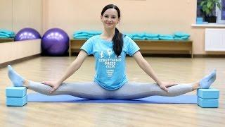 Растяжка на поперечный шпагат – разогрев тазобедренных суставов - Stretching Press Club