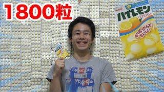 ハイレモン1800粒(100箱)で壁作ったら奇跡の検証結果になった!!