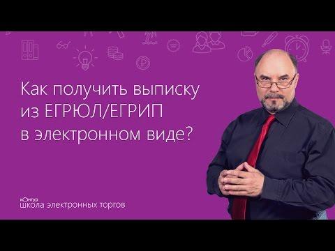 Как получить выписку из ЕГРЮЛ/ЕГРИП в электронном виде?
