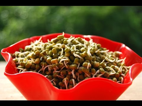 Sprouting green gram[Easy method] & Instant recipes